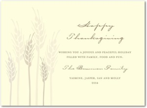 whimsical wheat thanksgiving greeting cards